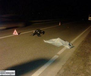 На Прикарпатті водій мікроавтобуса збив на смерть 51-річного пішохода. ФОТО