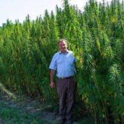 ШОК! В Україні відкриють центр терапії марихуаною
