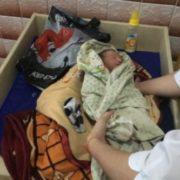 Серце крається. В ковдрі та поліетиленовому пакеті знайшли живе немовля(фото)