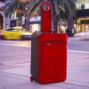 Жінка проїхала з тілом у валізі понад півтори тисячі кілометрів
