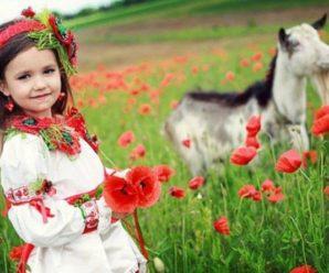 Наша мова солов'їна. Вітаймось по-українському!