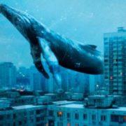 Як закарпатський гуморист став куратором гри «Синій кит» (фото)
