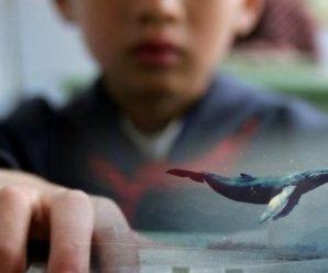 """""""Синій кит"""" на Львівщині: хлопчик влаштував онлайн-трансляцію самогубства (фото)"""