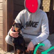 «Він з'їв кліща»: господар собаки, відео якого вразили користувачів соцмереж, пояснив його стан