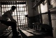 """На Прикарпатті до дев'яти років тюрми засуджено групу """"гастролерів"""""""