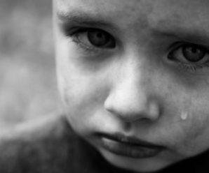 «Обережно, скажені діти»: мати покусаного хлопчика на Прикарпатті повісила дивне оголошення (фото)