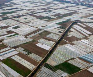 Унікальне Закарпаття: село, яке видно з космосу (ВІДЕО)