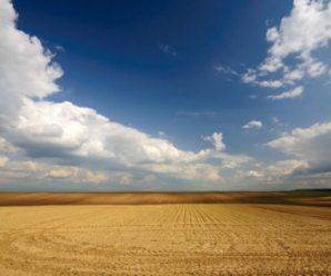 Ціна кредиту МВФ: Україна хоче дозволити продаж сільгоспземель з 2018 року
