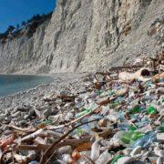 Сміття, водорості та порожні пляжі: у Криму знову провалять курортний сезон