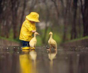 В Україні різко зміниться погода: дощі і похолодання