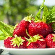 Як відрізнити «хімічну» полуницю від тієї, яку можна дати дитині