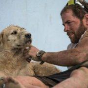 Спортсмени нагодували бездомну собаку і не підозрювали, до чого це призведе