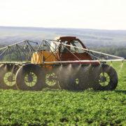 На Прикарпатті через скроплені поля хімікатами хворіють діти та вмирає худоба (відео)