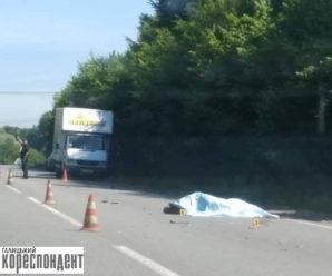 Смертельна ДТП на Прикарпатті: скутерист загинув на місці (Фото)