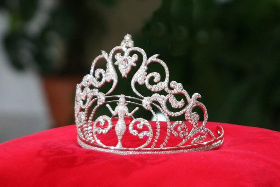 "Результат пошуку зображень за запитом ""міс корона"""