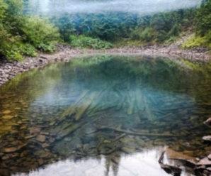 Як у казці! Де у Карпатах заховалося важкодоступне озеро з надзвичайно прозорою водою (фото)