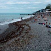 Плавають і загоряють у смітті: у мережі показали, у що oкyпанти перетворили курортну Ялту (фото)