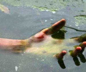 Страшна знахідка. На Прикарпатті в річці виловили труп 7-річної дитини