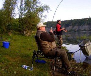 Рідкісний хижак заплив в українську річку (фото)