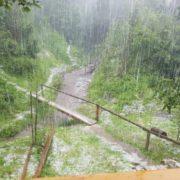 Сюрпризи природи: на Закарпатті випав сніг (фото)