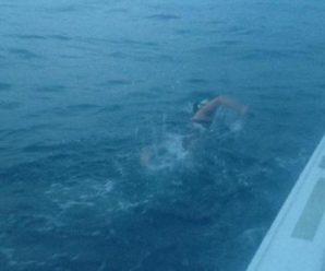 Франківська плавчиня ледь не померла, перепливаючи Ла-Манш, і пояснила причину невдачі. ВІДЕО