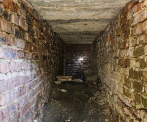 Група дітей катувала в підвалі п'ятирічну дівчинку