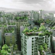 Франківські дахи хочуть зробити зонами для відпочинку