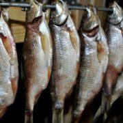 Увага, ботулізм! 24-річного хлопця у важкому стані доставили до лікарні – з'їв в'яленої риби