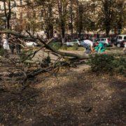 Страшна смерть у Дніпрі: вагітну дівчину вбила гілка дерева (фото, відео 18+)