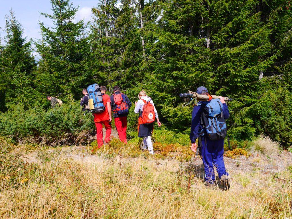 Під час сходження на Говерлу, зламала ногу туристка із Тернополя