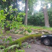 Вчорашній сильний вітер наробив шкоди в Івано-Франківську та по області