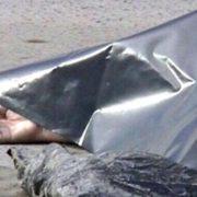 На автостанції №2 виявили тіло молодої жінки