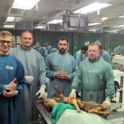 Аспірант ІФНМУ пройшов навчання в Інституті анатомії в Австрії (фото)