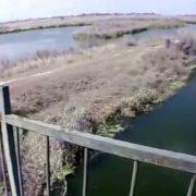 На Закарпатті 13-річна дівчинка скоїла самогубство, кинувшись з мосту