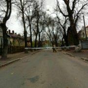 Вулицю Тарнавського перекрили через повалене дерево. ФОТО