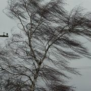 На Прикарпатті сильний вітер знеструмлює виборчі дільниці