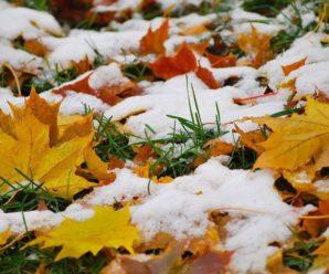 Стало відомо, коли на Прикарпатті випаде перший сніг