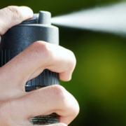 Газова атака! У школі на Прикарпатті розпилили перцевий балончик – одна школярка у лікарні
