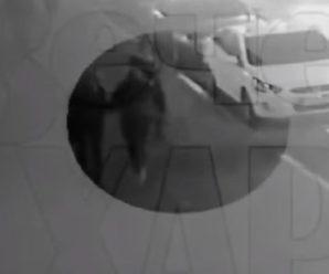 Емоції зашкалюють: дві дівчини дивом врятувалися від cмepті в ДTП у Харкові (відео)