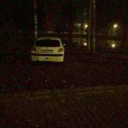 В Івано-Франківську упіймали «бидло», яке своїм автомобілем каталося по міському парку (фото)