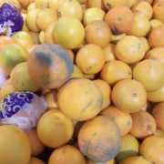 Бруд та фрукти з пліснявою: франківчани скаржаться на один з найбільших супермаркетів Франківська. ФОТО