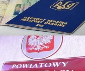 Польща скасувала робочі візи для українців: новий порядок працевлаштування