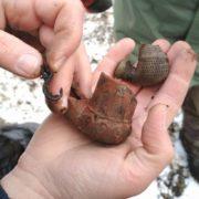 Біля скверу Міцкевича при прокладанні мереж знайшли старовинні люльки. ФОТО