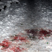 Душив, бив і в кінці зарізав: подробиці вбивства матері сином. ФОТО 18+
