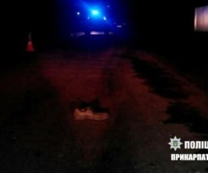 Смертельна ДТП на Івано-Франківщині – ВАЗ збив пішохода