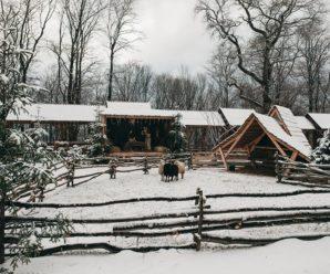 Зимова казка: у соцмережі з'явилися неймовірні світлини Гошева. ФОТО