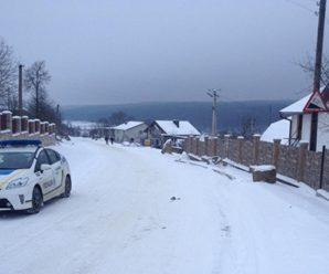 На Тернопільщині, зaгинулa 22-річна дівчина, яка каталась на санях, прив'язаних до автомобіля