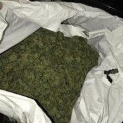 На Прикарпатті 20-річний студент збував наркотики у великих розмірах (ФОТО)