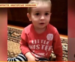 Дворічний прикарпатець вражає феноменальною пам'яттю: дитина знає столиці десятків країн. ВІДЕО