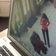Із зустрічі однокласників, вона могла не повернутися: на Сумщині адміністратор ресторану врятувала життя відвідувачці(відео)
